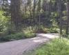Okanagan campground BC Parks