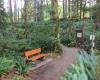 Vancouver Island hiking BC Parks Elk Falls Provincial Park