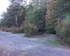 Camping Denman Island BC Parks