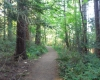 Trails Fillongley Park