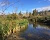 Vaseux Lake Provincial Park Nature Walk Oliver
