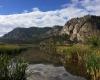 Vaseux Lake Provincial Park Wildlife Centre BC Parks camping