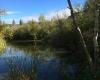 Vaseux Lake Provincial Park BC Parks